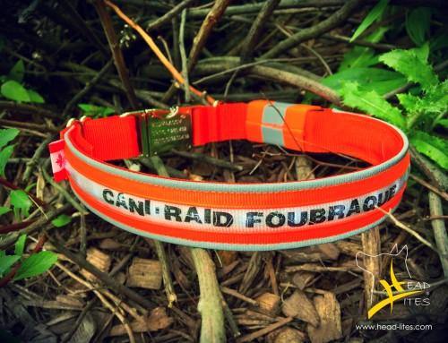 TIRAGE HEAD-LITES: Inscrivez-vous au plus tard le 20 juillet au Cani-RAID FouBraque 2017!!!