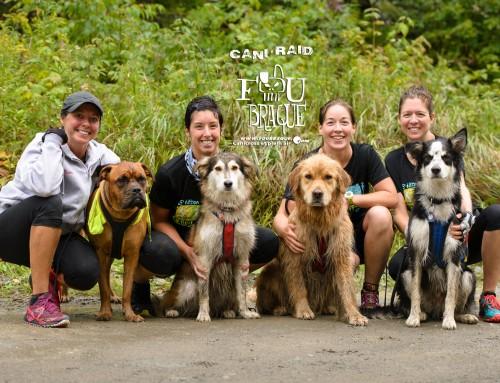Le 7ième édition du Cani-RAID FouBraque du Parc des Appalaches!!!